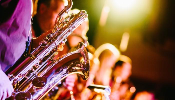 Cosa succede nel cervello quando la musica ci fa venire i brividi?