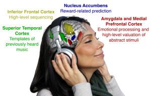 Gli Effetti Della Dopamina: Quando La Musica Gratifica La Mente